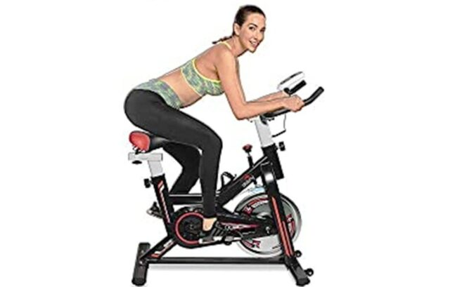 Dolphy Exercise Bike